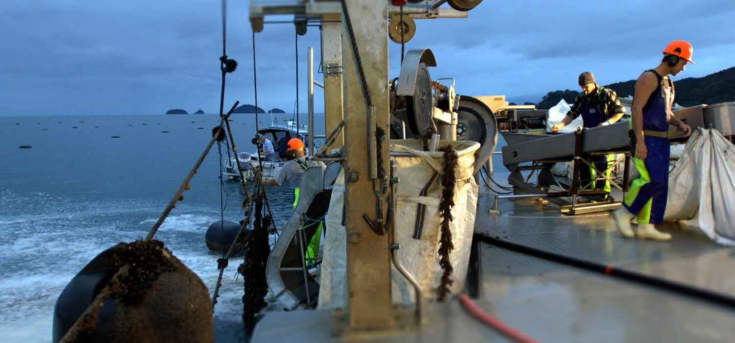 Commercial fishing vessels require a Safe Operational Plan.